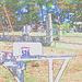 Hill crest cemetery  - Colourful outlines / Contours de couleurs