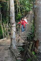 The walk across a rope bridge