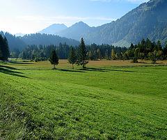 Herbstanfang im Bregenzerwald