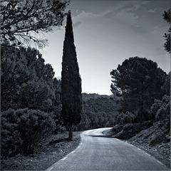 Stillife With Road (I)