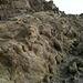 Bat Cave Butte (4965)