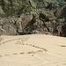 Bat Cave Butte (4981)