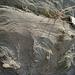 Bat Cave Butte (5005)