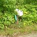 Half moon state park. Sur la 4 près de la 30 nord. Vermont, USA /  États-Unis -   26 juillet  2009 -   Courrier dans la nature - Mail and nature