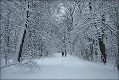 Winterlandschaft am Annateich