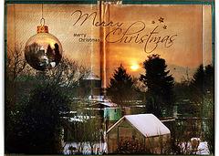 *Merry Christmas* (pip)