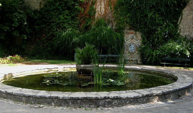 Oeiras, Municipal Garden, pond (1)