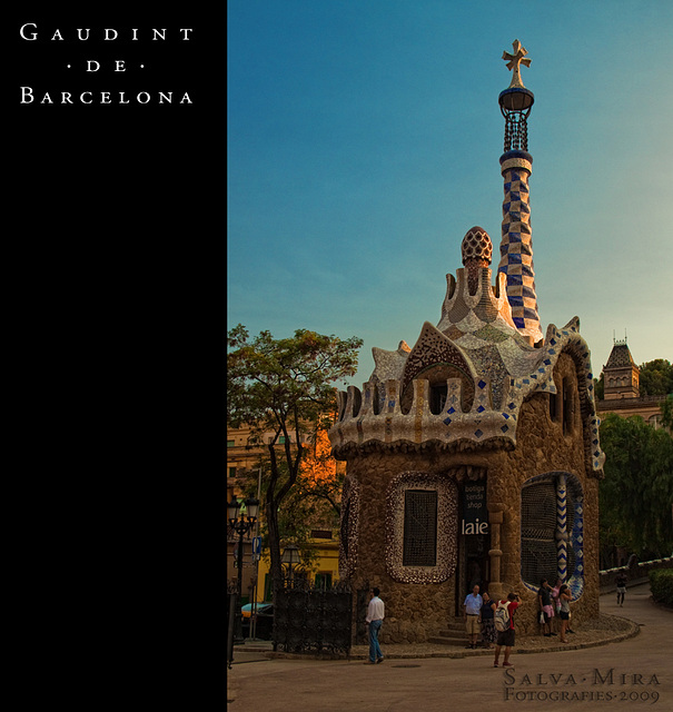 Gaudint de Barcelona [ #16 ]