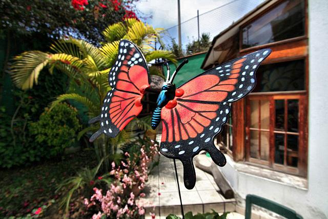 Volanado sobre el jardín