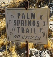 Palm Springs Trail (1919)
