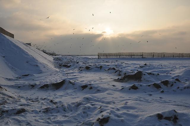 un début de soirée hivernal sur la plage