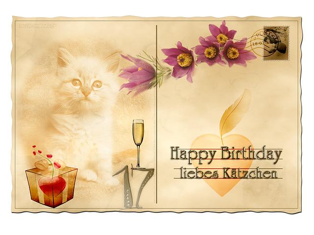 (17) CAT*s Day (pip)