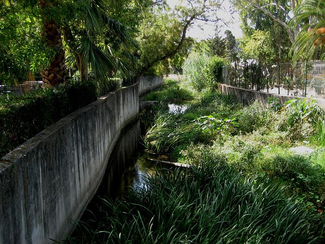 Oeiras, Municipal Garden, Ribeira da Lage - small river (2)