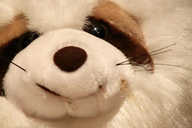 20091006 0872Tw [D~LIP] Panda-Bär, Bad Salzuflen
