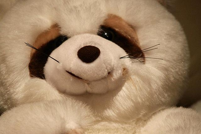 20091006 0873Tw [D~LIP] Panda-Bär, Bad Salzuflen