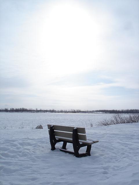 Randonnée en raquettes - Snowshoe run / Banc solitaire dans la neige