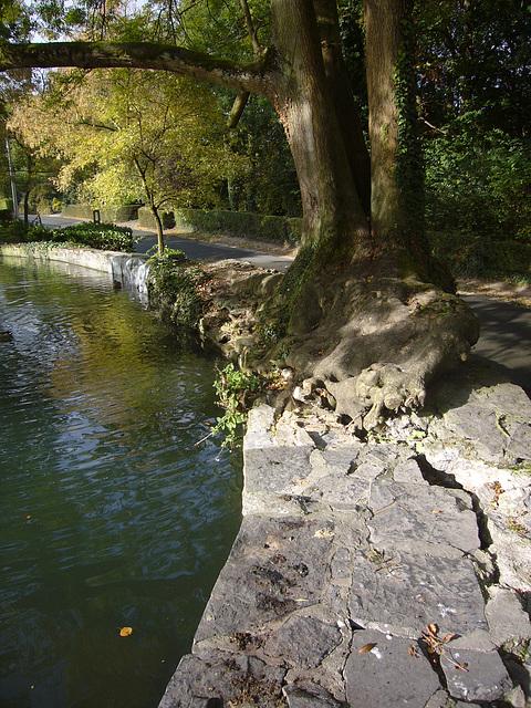Le pied au bord de l'eau