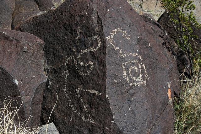 Three Rivers Petroglyphs (6074)