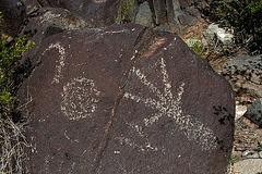 Three Rivers Petroglyphs (6103)