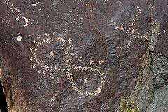 Three Rivers Petroglyphs (6105)