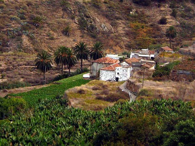 IMG 1413 Tal von Vallehermosa