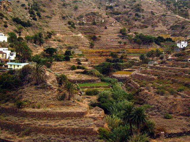 IMG 1415 Tal von Vallehermosa