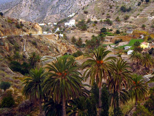 IMG 1417 Tal von Vallehermosa