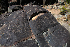Three Rivers Petroglyphs (6106)