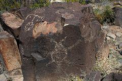Three Rivers Petroglyphs (6109)