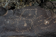 Three Rivers Petroglyphs (6112)