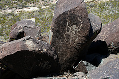 Three Rivers Petroglyphs (6113)