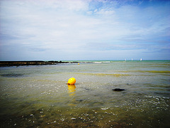 Solitude de la bouée pendant la marée descendante