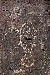 Three Rivers Petroglyphs (6127)