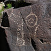 Three Rivers Petroglyphs (6128)