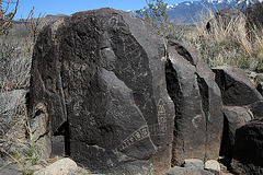 Three Rivers Petroglyphs (6131)