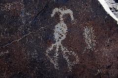 Three Rivers Petroglyphs (6143)