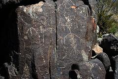 Three Rivers Petroglyphs (6148)