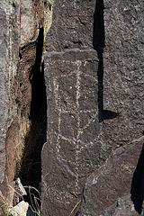 Three Rivers Petroglyphs (6149)