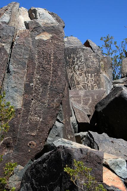Three Rivers Petroglyphs (6154)