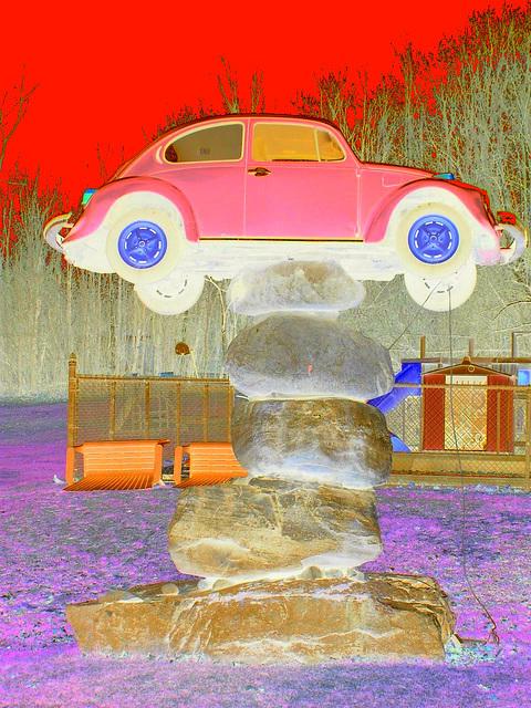 Coccinelle sur roches /  Beetle on the rocks   - Couleurs ravivées en négatif