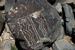 Three Rivers Petroglyphs (6156)
