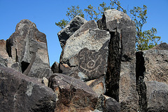 Three Rivers Petroglyphs (6160)