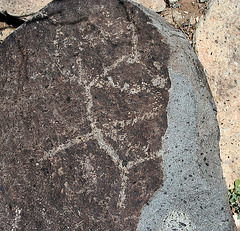 Three Rivers Petroglyphs (6161)