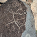 Three Rivers Petroglyphs (6161)