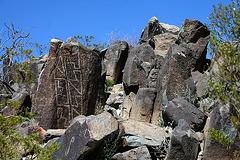 Three Rivers Petroglyphs (6162)