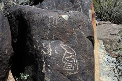 Three Rivers Petroglyphs (6163)