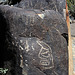 Three Rivers Petroglyphs (6163)