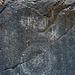 Marble Canyon - Graffiti (4643)