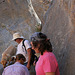 Marble Canyon - Petroglyphs (4694)
