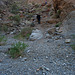 Marble Canyon - Trail Around Blockage (4707)